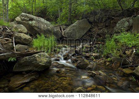 Natural Creek Beauty
