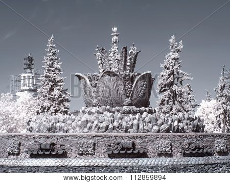 On Territory Of The Exhibition Complex. Infrared Photography. Fountain Stone Flower