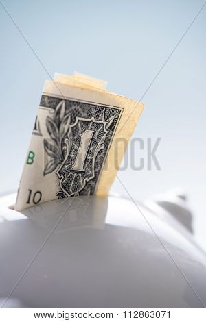 Dollar Note In Piggy Bank,saving Concept