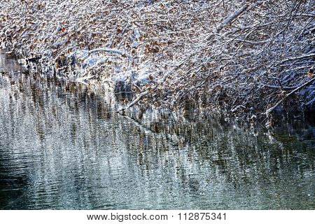 Winter Leaves Snow Ice  Abstract Wenatchee River Valley Leavenworth Washington