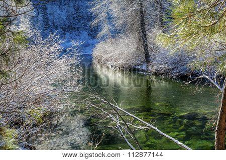 Winter Leaves Snow Ice  Wenatchee River Valley Leavenworth Washington