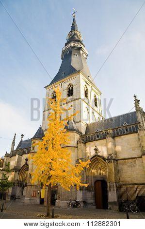 Hasselt Cathedral, Belgium