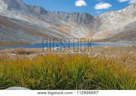 Grass And Lake On Mount Evans