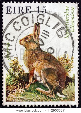 Postage Stamp Ireland 1980 Irish Mountain Hare