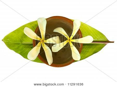Frangipani In A Bowl On A Fresh Banana Leaf