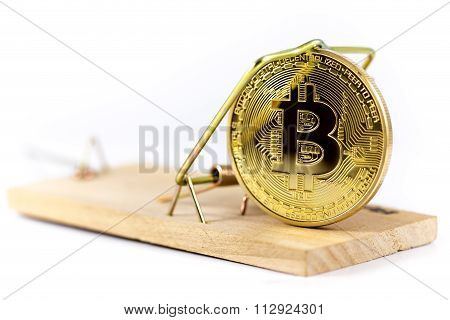 Mousetrap With Bitcoin