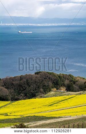 Tanker floats sea