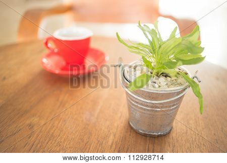 Red Cup Of Coffee And Green Plant Bucket On Wooden Table
