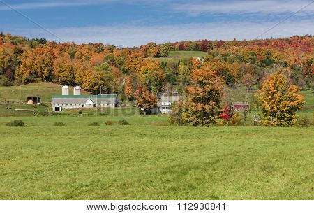 Beautiful dairy farm in Vermont, USA