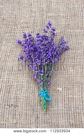 Bunch Of Violet Lavender Tied With String
