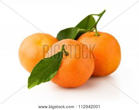 Ripe Mandarin Fruits