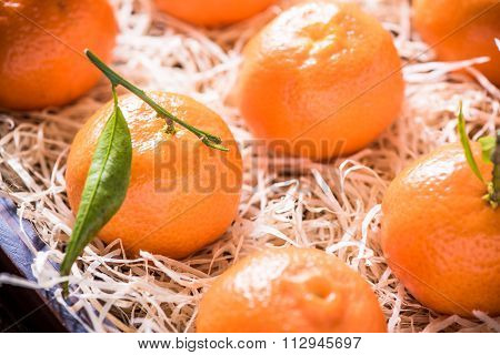 Fresh Tangerines In Tranportation Crate
