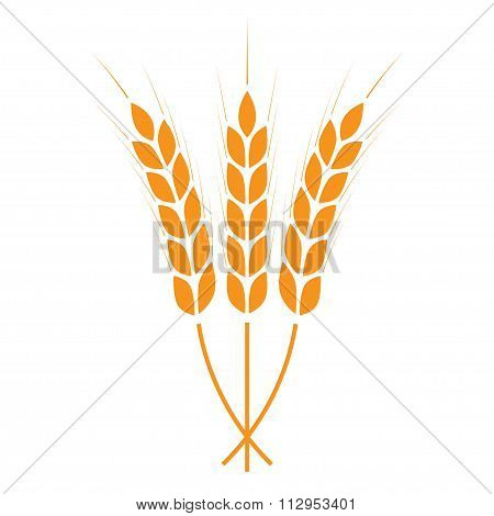 Wheat ears icon. Crop or agricultural symbol. Design element for bread packaging or beer label.