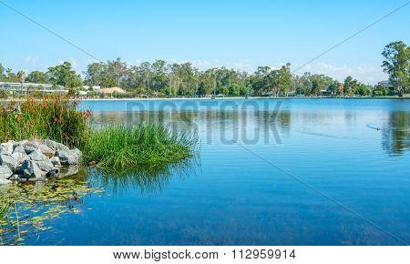 Early morning on lake