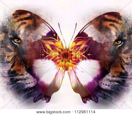 portrait tiger and butterfly. computer collage. Color Abstract background. White background. Animal