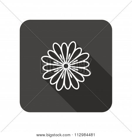 Camomile flower icons. Floral symbol.