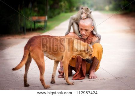 Man compassion for Dog and Monkey.Merciful for animal.