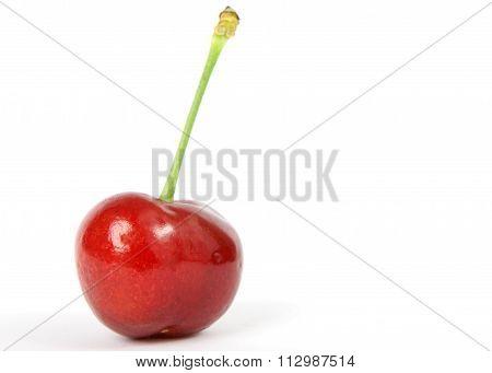 Summer Fruit Salad Ingredient, Red Cherry On Green Stalk