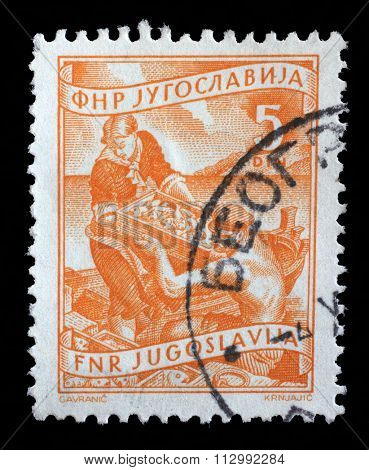 YUGOSLAVIA - CIRCA 1952: A stamp printed in Yugoslavia shows as woman helps a fisherman unload fish, domestic economy Series, circa 1952