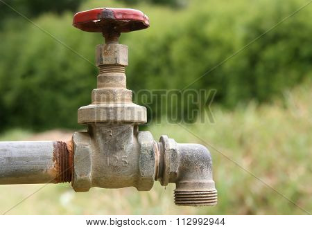 Old Garden Tap In A Green Garden In Summer