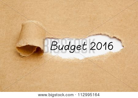 Budget Year 2016 Torn Paper Concept