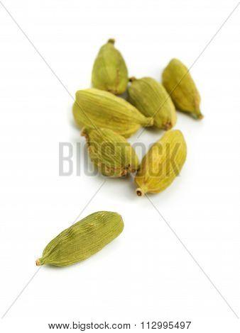 Cardamom Seed Pods Close Up