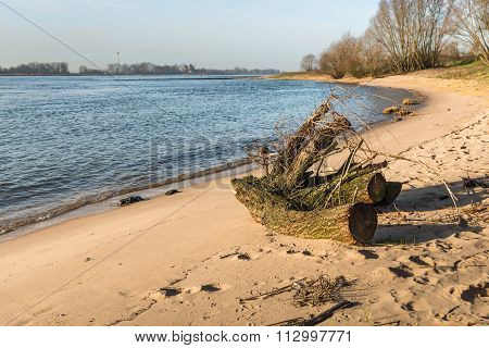 Tree Stump Washed Ashore On The Sandy Beach