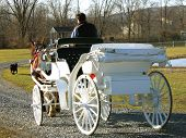 stock photo of stagecoach  - White carriage drawn by Clydesdale horse - JPG