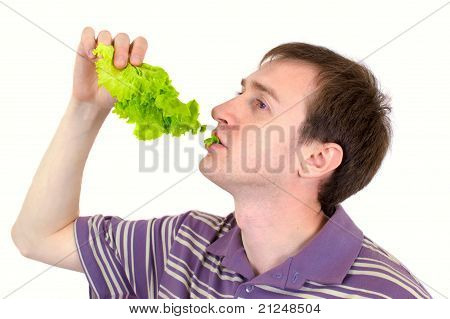 The Young Man Is Appetizing Eats Green Salad