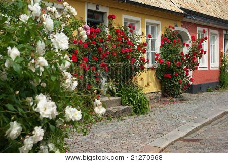 Swedish houses with roses