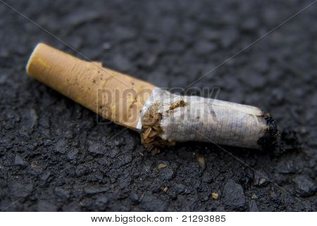 Disintegrating Cigarette