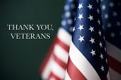 some american flags and the text thank you veterans against a dark green background poster
