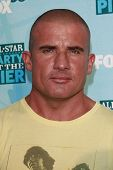 SANTA MONICA - JULY 14: Dominic Purcell at the Fox TCA Summer Party in Santa Monica, California on J