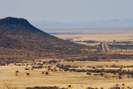 stock photo of open grazing area  - landscape of a dry area in south africa  - JPG
