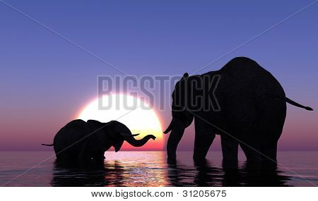 Elephants bathing in the sea at sunset.