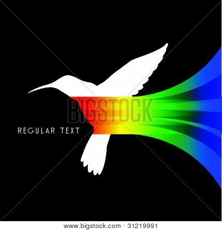 Vector Abstract Colibri Illustration