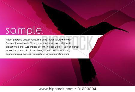 Vector Bird Silhouette Design