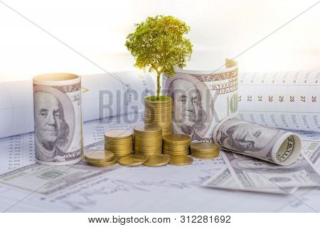 poster of The Tree Is Growing Both On The Progress Of Money And Financial Reports, Along With Financial Accoun