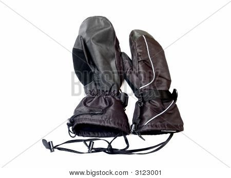 Winter Skidoo Gloves Isolated