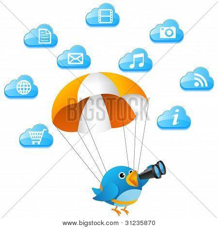 Blue bird searching on cloud