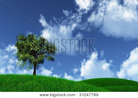 Tree on Green Field 3D render