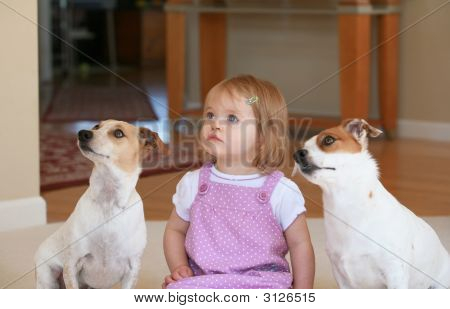 Little Girl With Her Dogs