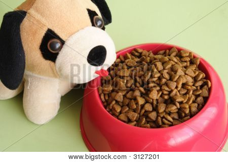Pet And Food