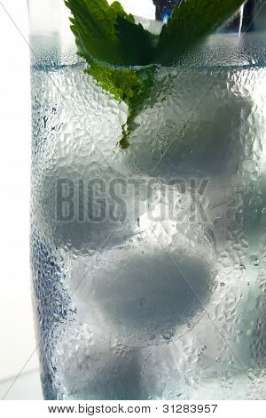 Glass of Ice Water with Mint Sprig