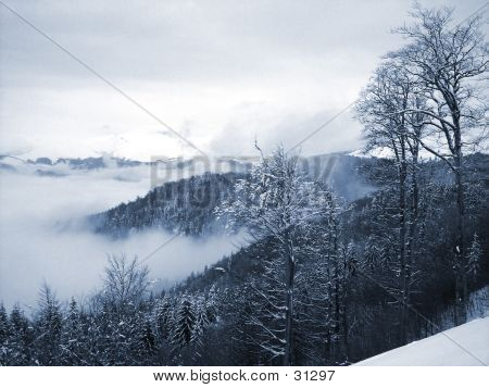 Winter In Carpathians Mountains
