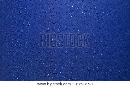 Dew In Blue Back