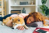 Pretty Teenage Girl Is Sleeping At Home Hugging Adorable Shiba Inu Dog In Sleep Lying On Couch In Ap poster