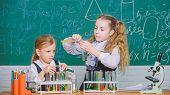 School Equipment For Laboratory. Girls On School Chemistry Lesson. School Laboratory Partners. Kids  poster