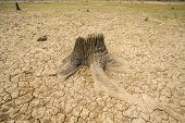 Dam At Parched, Dry Terrain, Drought, Climate Change And Drought Land poster