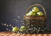 Still. The morning sun lights up a basket of apples